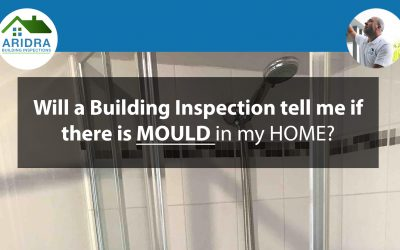 Will a Building Inspection tell me if there is mould in the house?